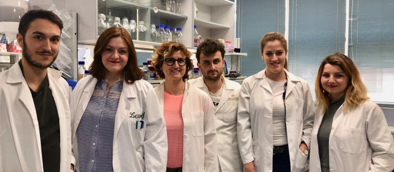 Gene expression and RNA metabolism